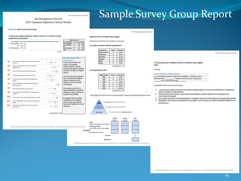 Sample Survey Group Report