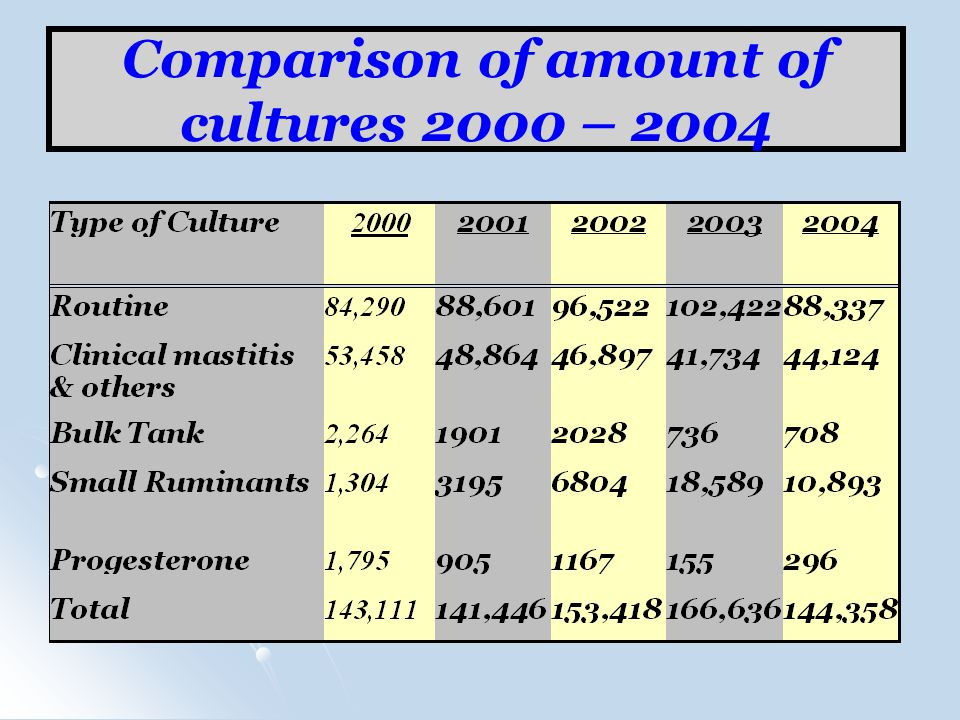 Comparison of amount of cultures 2000 – 2004
