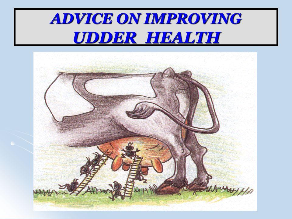 ADVICE ON IMPROVING UDDER HEALTH