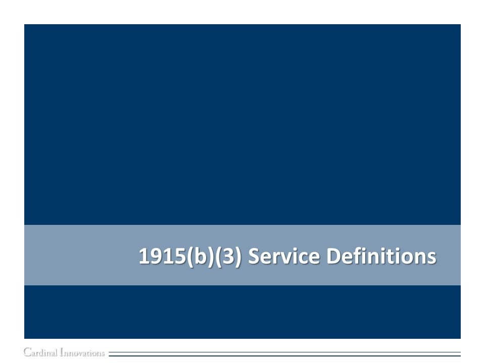 1915(b)(3) Service Definitions