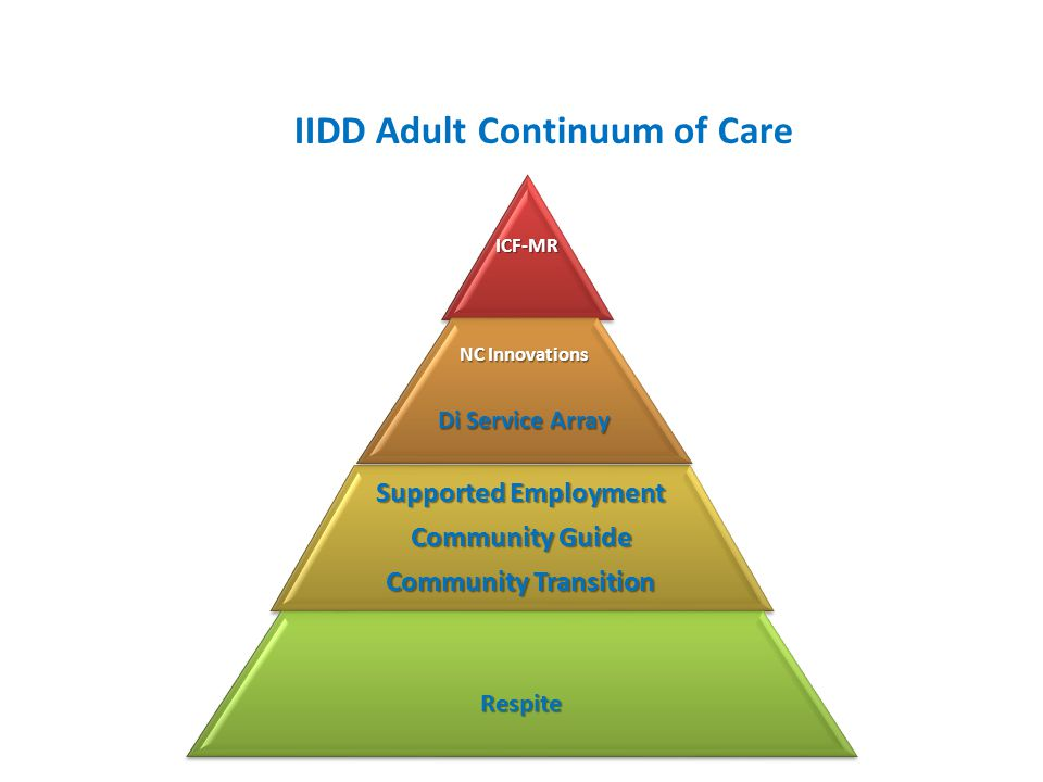 IIDD Adult Continuum of Care