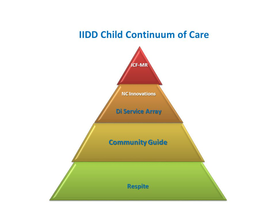 IIDD Child Continuum of Care