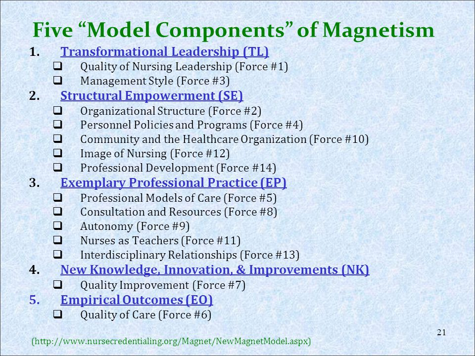 Five Model Components of Magnetism