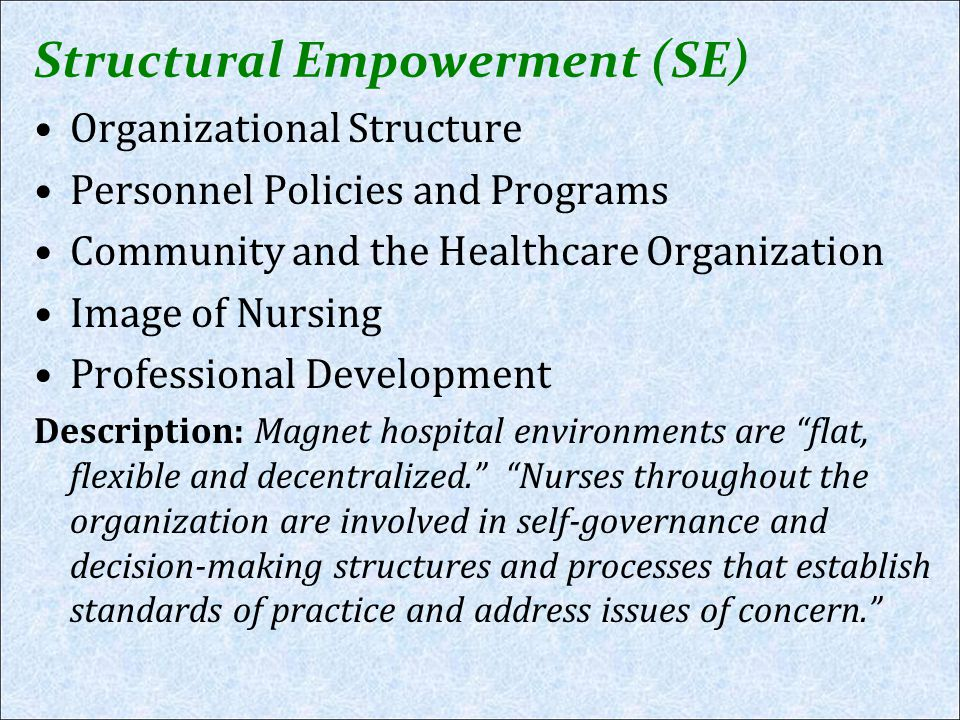 Structural Empowerment (SE)