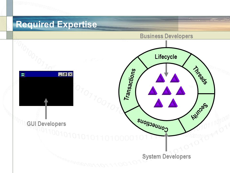 Required Expertise Business Developers Lifecycle Threads Transactions