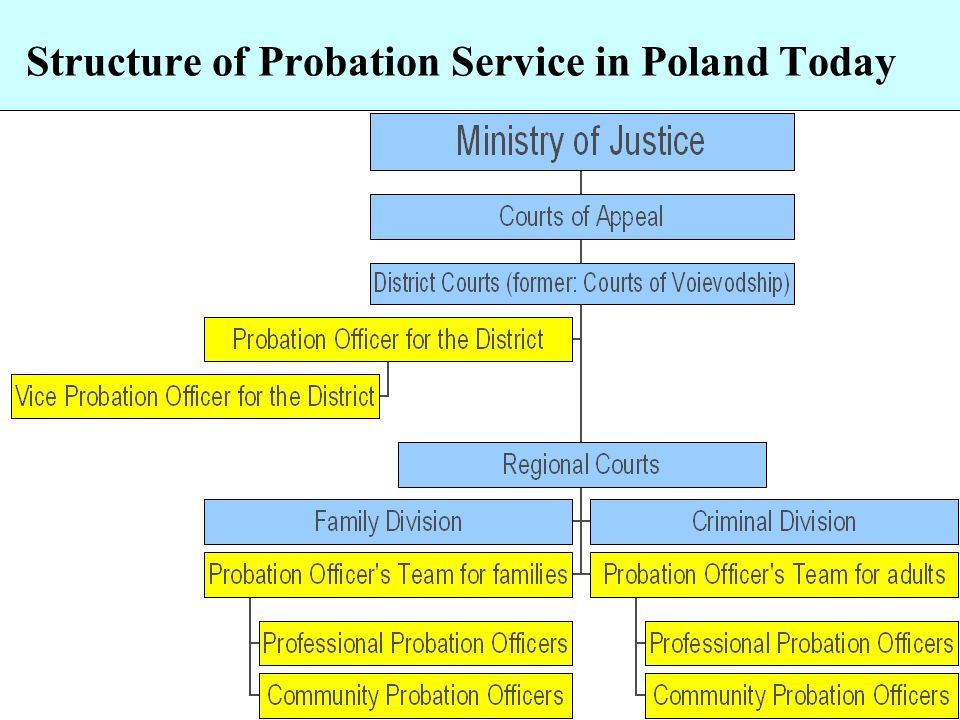 Structure of Probation Service in Poland Today