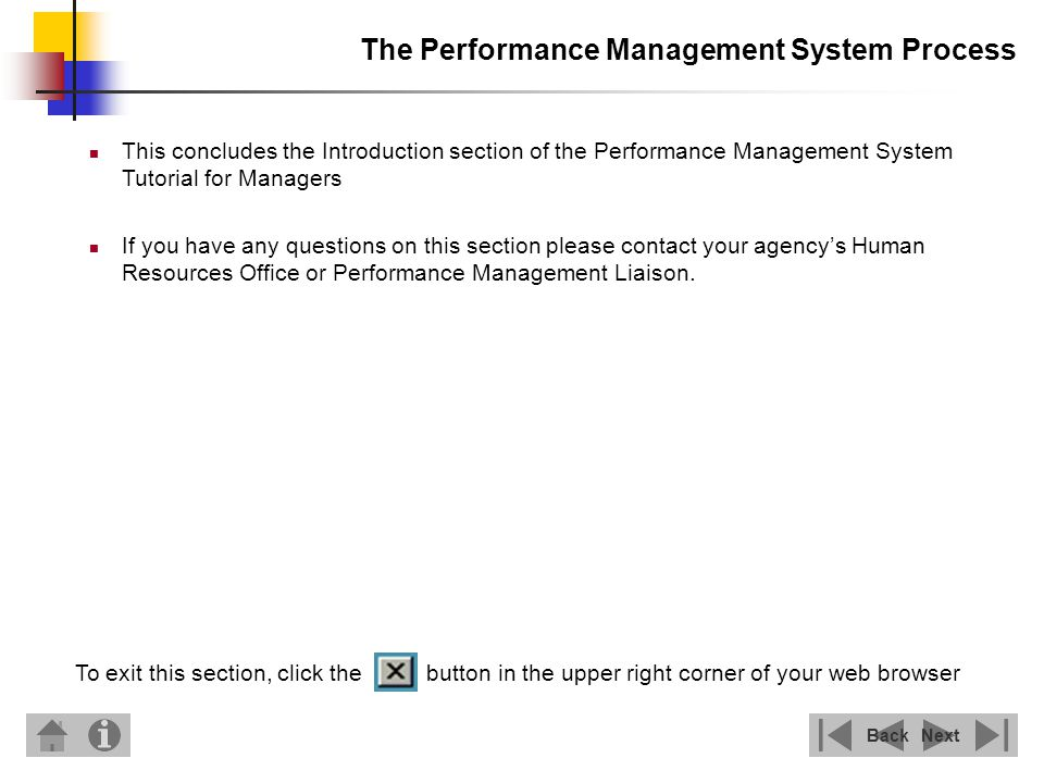 The Performance Management System Process