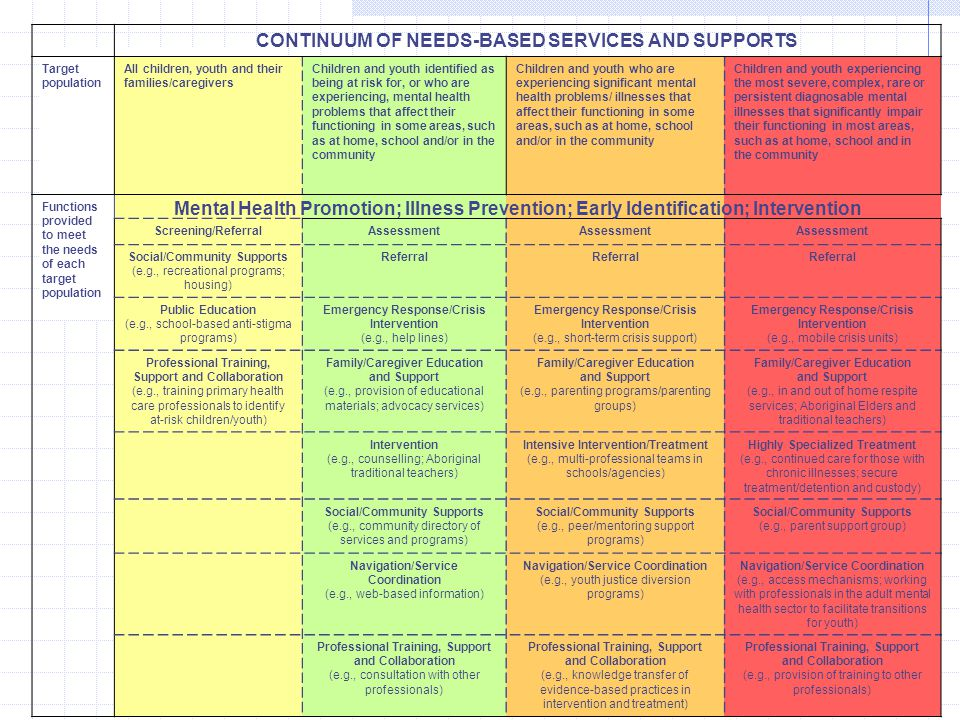 CONTINUUM OF NEEDS-BASED SERVICES AND SUPPORTS