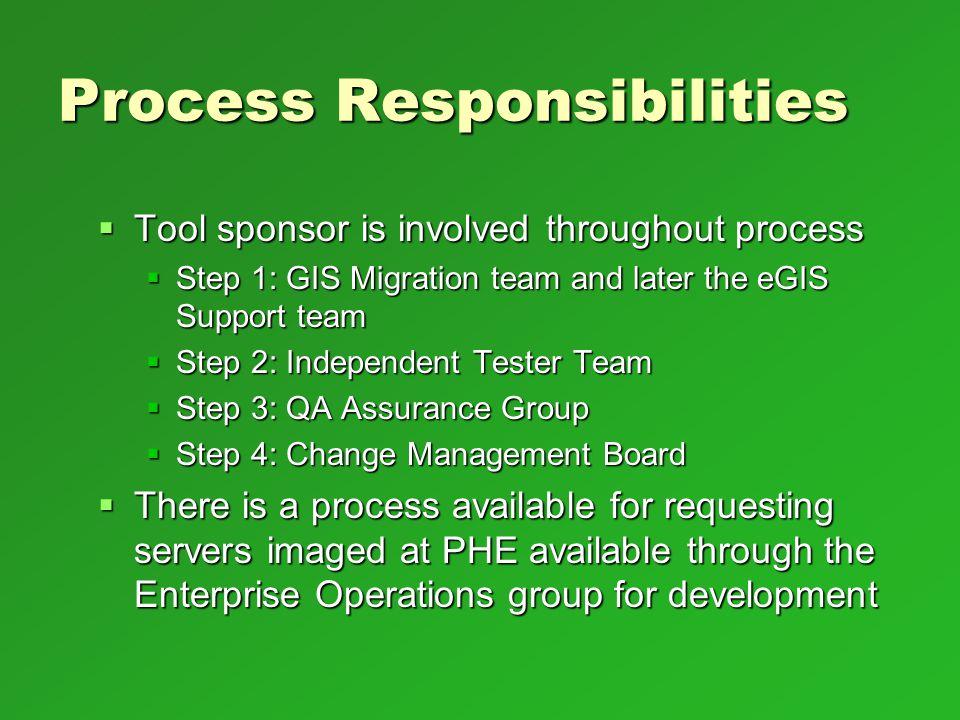 Process Responsibilities