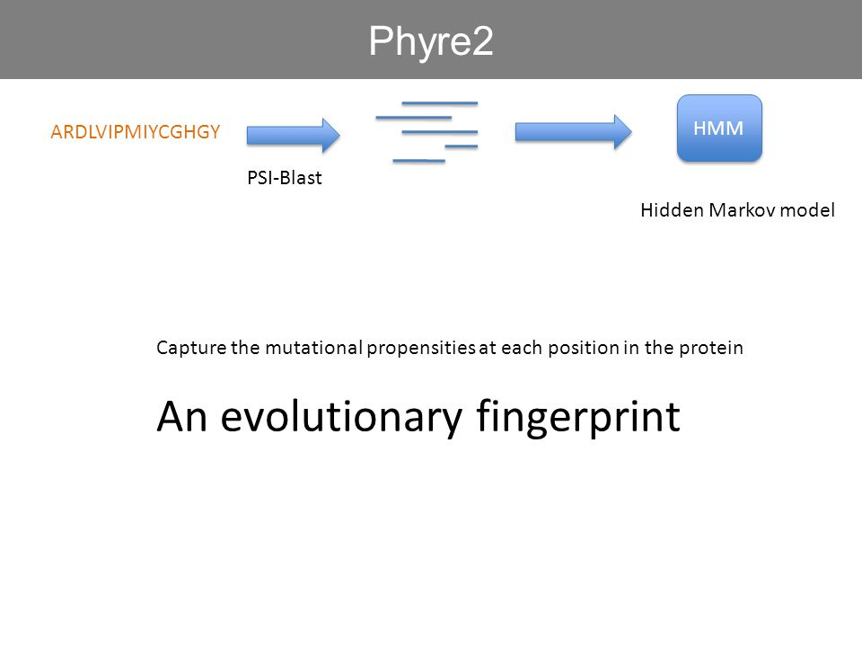 An evolutionary fingerprint