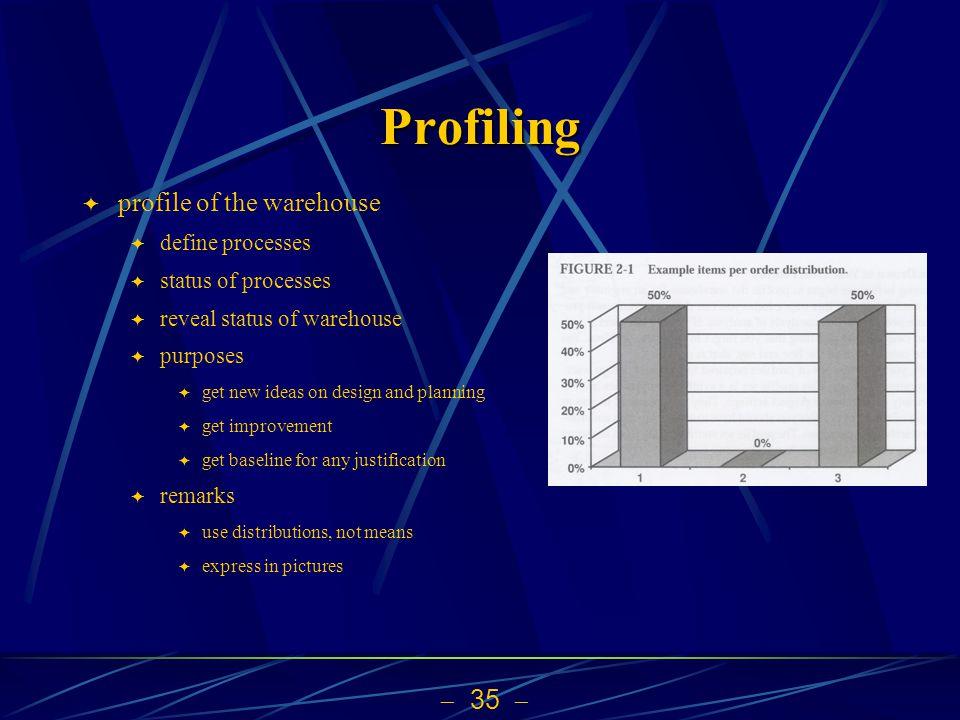 Profiling profile of the warehouse define processes