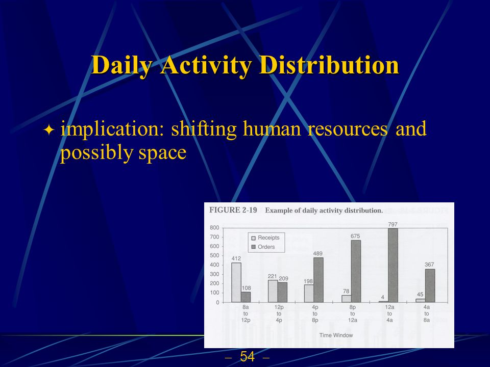 Daily Activity Distribution