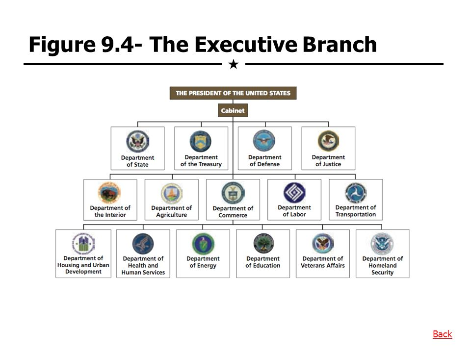 Figure 9.4- The Executive Branch