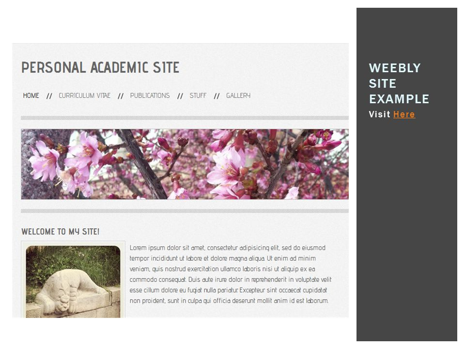Weebly Site Example Visit Here