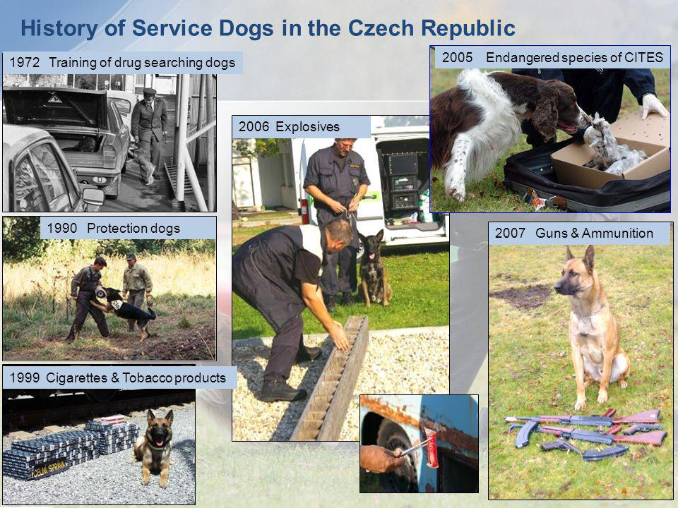 History of Service Dogs in the Czech Republic