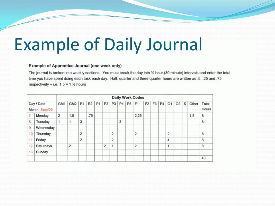 Example of Daily Journal