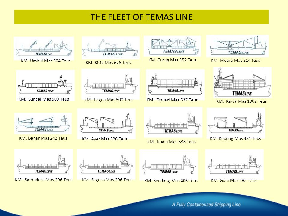 THE FLEET OF TEMAS LINE KM. Umbul Mas 504 Teus KM. Curug Mas 352 Teus