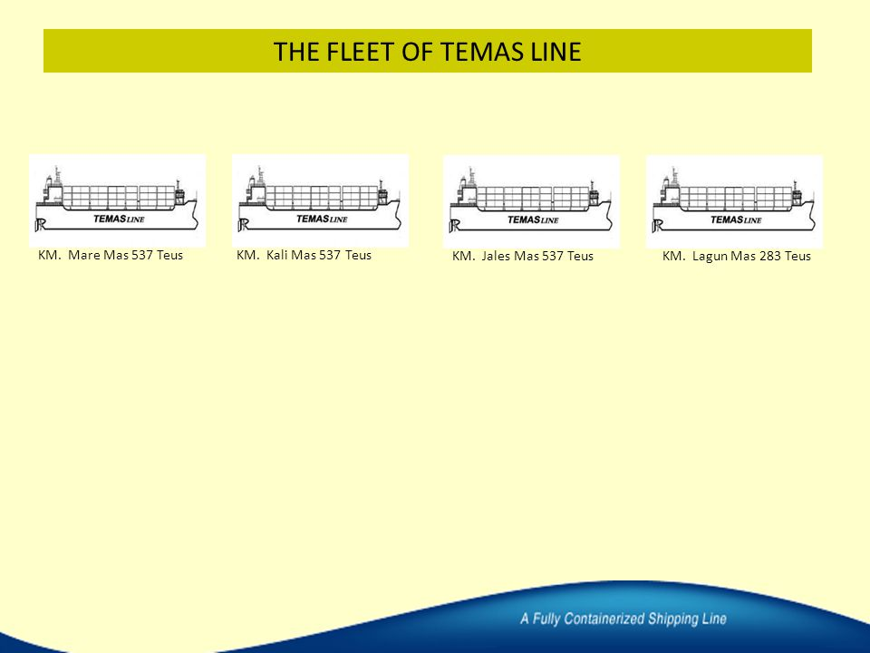THE FLEET OF TEMAS LINE KM. Mare Mas 537 Teus KM. Kali Mas 537 Teus