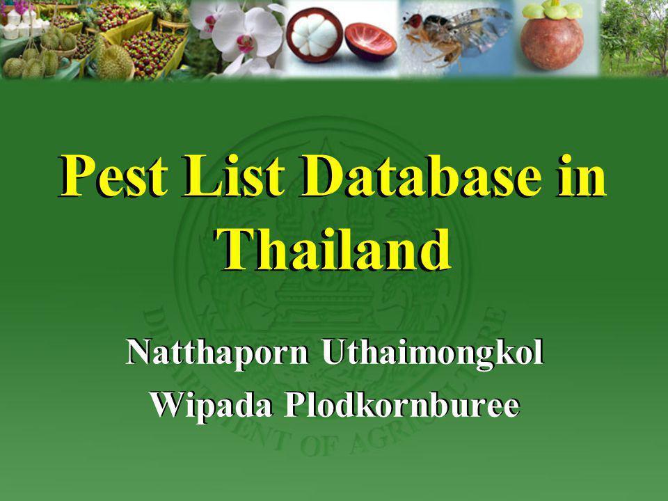 Pest List Database in Thailand