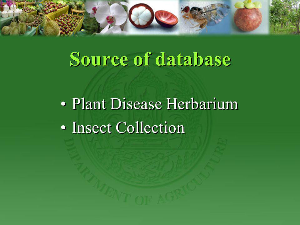 Source of database Plant Disease Herbarium Insect Collection