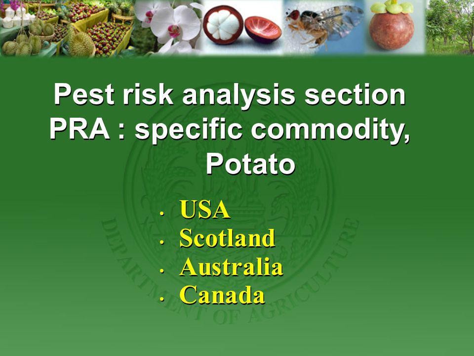 Pest risk analysis section PRA : specific commodity, Potato