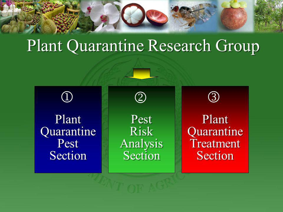 Plant Quarantine Research Group
