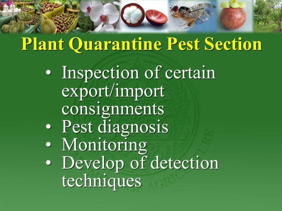 Plant Quarantine Pest Section