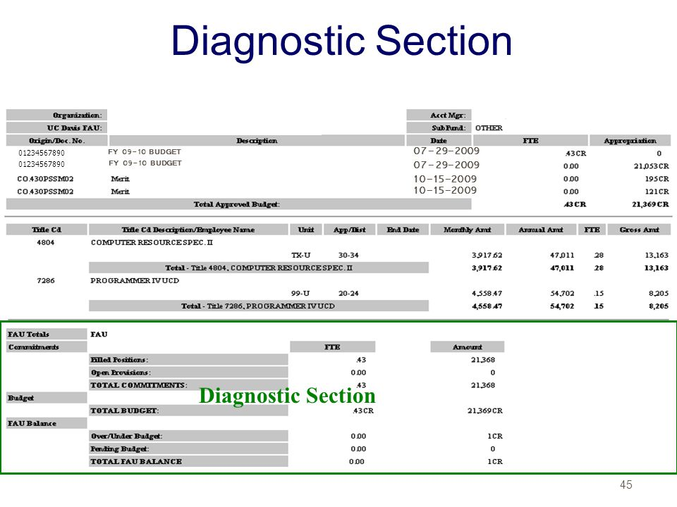 Diagnostic Section Diagnostic Section 07-29-2009 07-29-2009 10-15-2009