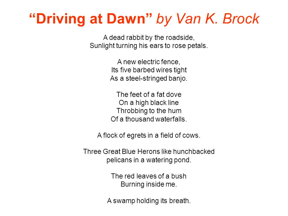 Driving at Dawn by Van K. Brock