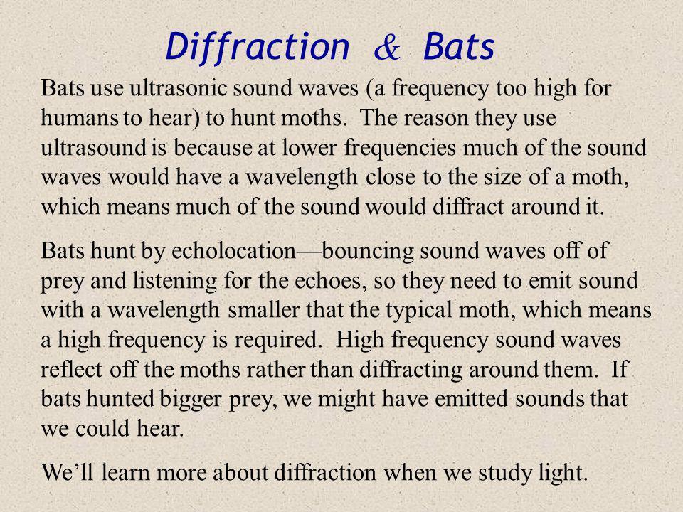 Diffraction & Bats