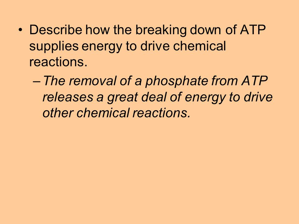 Describe how the breaking down of ATP supplies energy to drive chemical reactions.