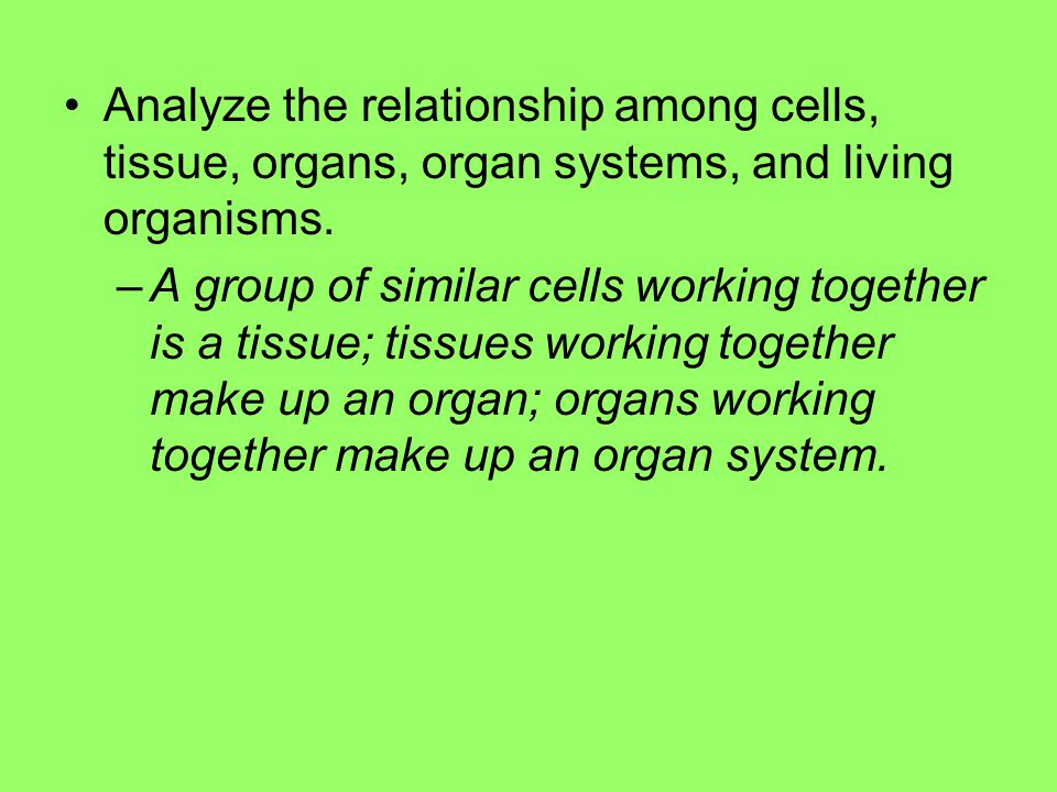 Analyze the relationship among cells, tissue, organs, organ systems, and living organisms.