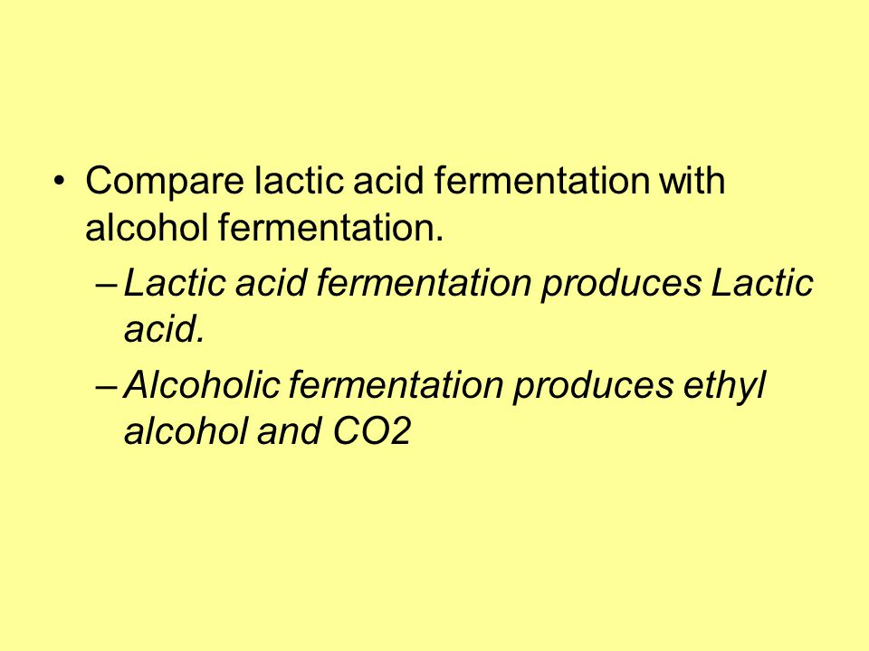 Compare lactic acid fermentation with alcohol fermentation.