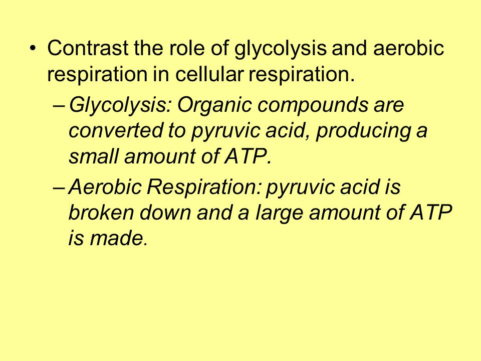 Contrast the role of glycolysis and aerobic respiration in cellular respiration.
