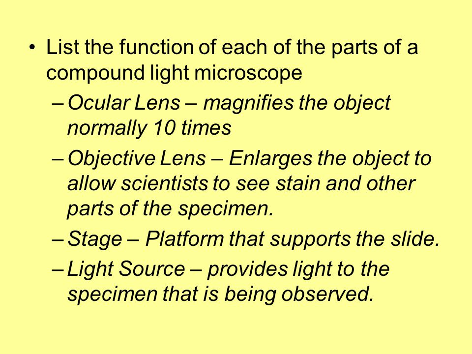 List the function of each of the parts of a compound light microscope
