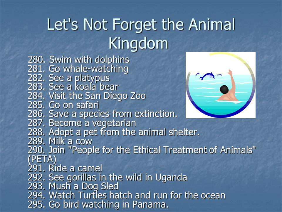 Let s Not Forget the Animal Kingdom