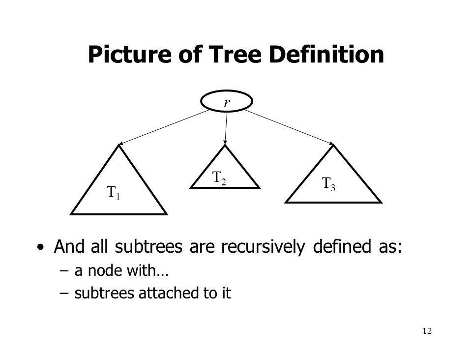 Picture of Tree Definition