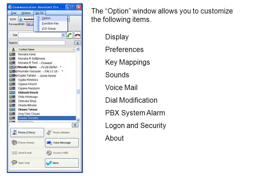 The Option window allows you to customize the following items.