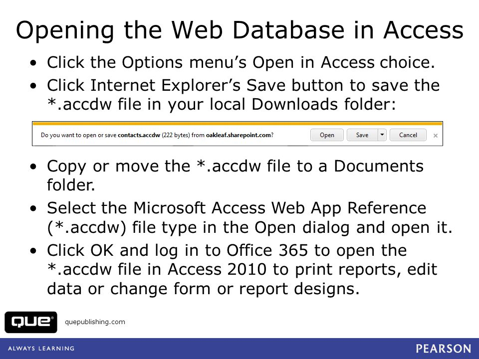 Opening the Web Database in Access