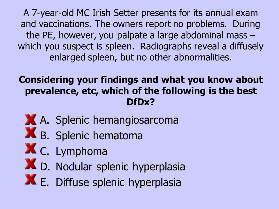 Splenic hemangiosarcoma Splenic hematoma Lymphoma