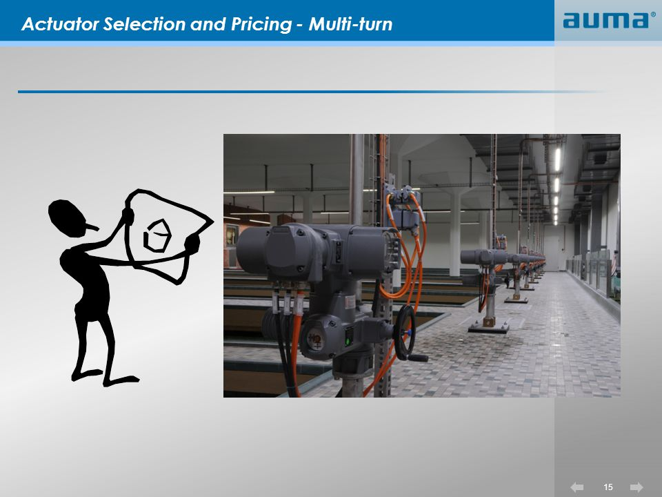 Actuator Selection and Pricing - Multi-turn