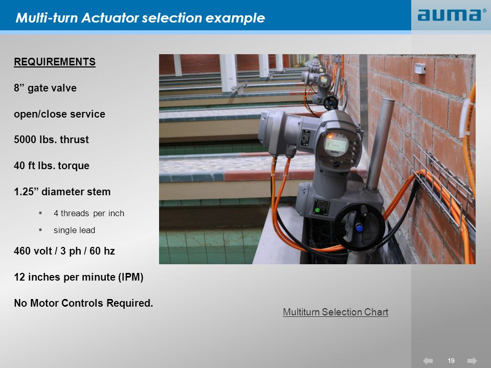 Multi-turn Actuator selection example