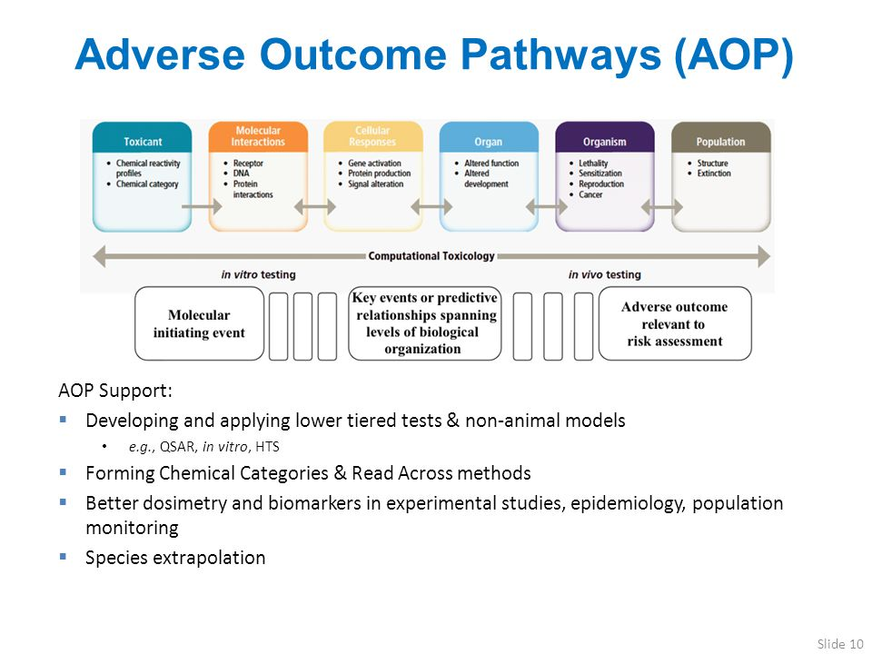 Adverse Outcome Pathways (AOP)