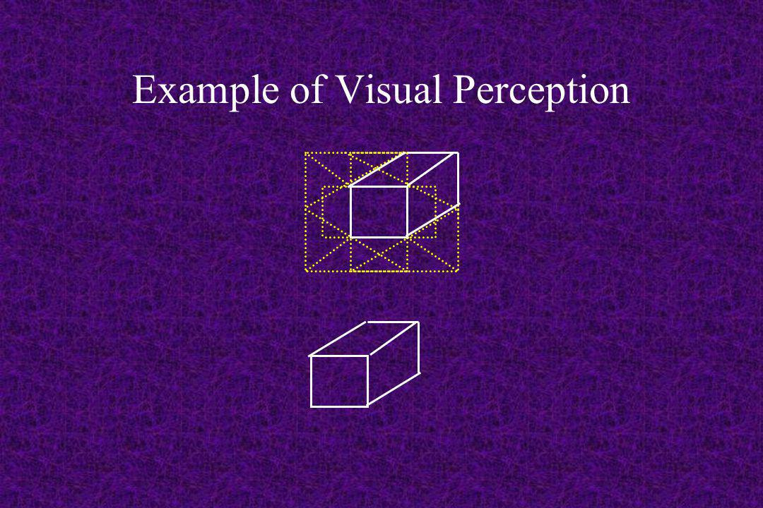 Example of Visual Perception