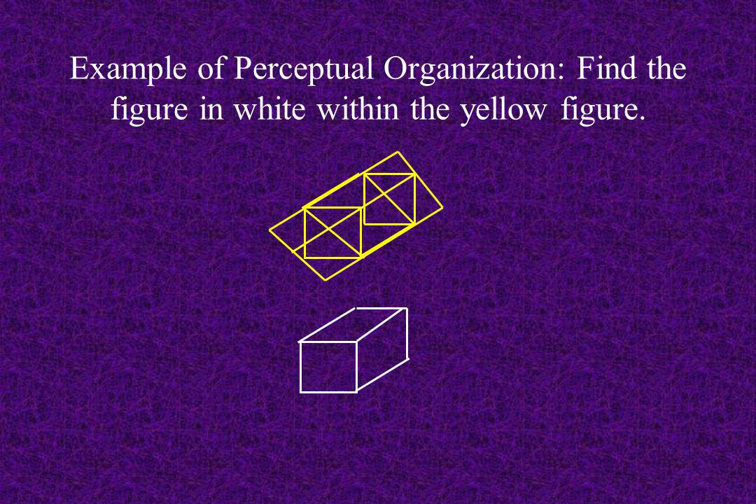 Example of Perceptual Organization: Find the figure in white within the yellow figure.