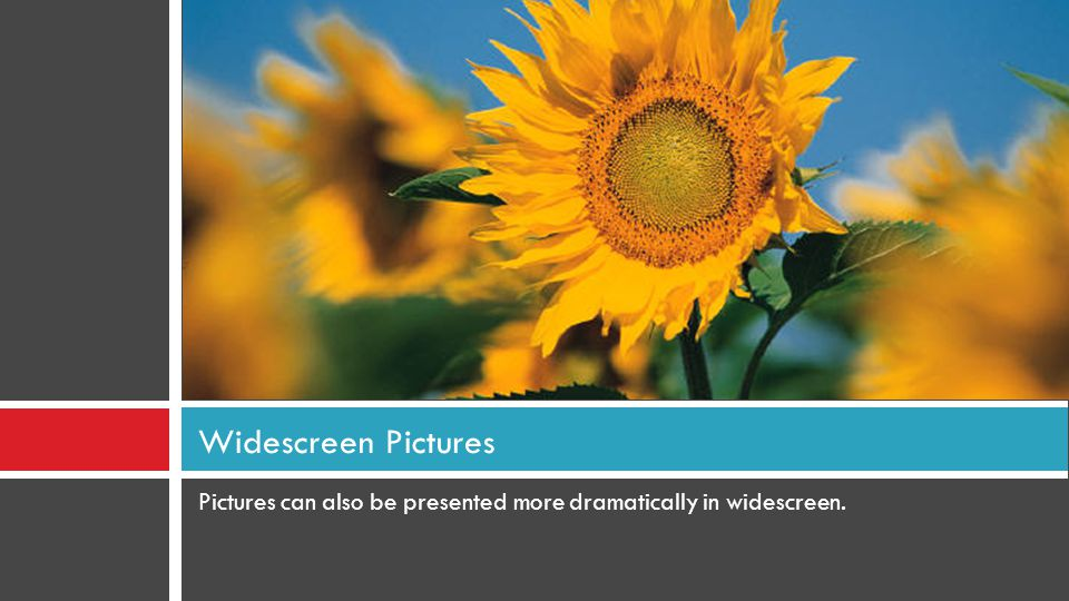 Widescreen Pictures Pictures can also be presented more dramatically in widescreen.