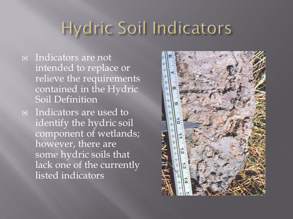 Hydric Soil Indicators