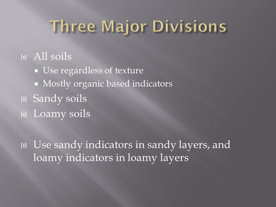 Three Major Divisions All soils Sandy soils Loamy soils