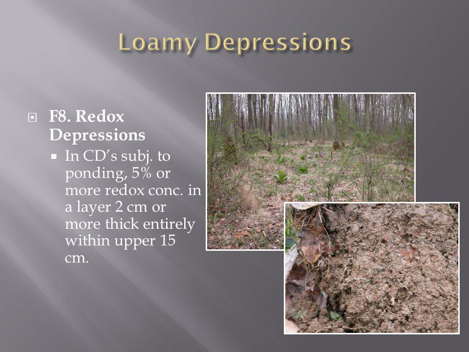 Loamy Depressions F8. Redox Depressions