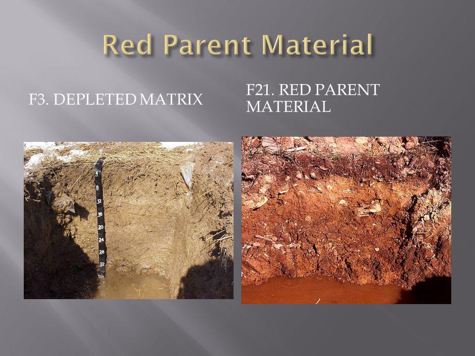 Red Parent Material F3. Depleted Matrix F21. RED Parent Material